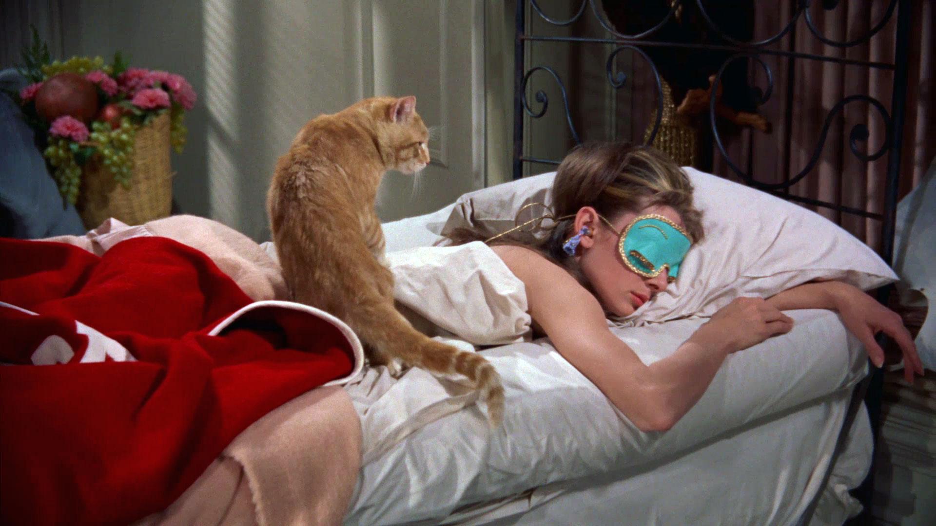 Resultado de imagem para audrey sleeping