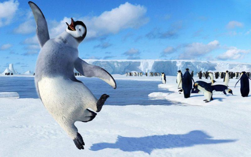 happy feet, penguin, happy, jumping with joy, ecstatic