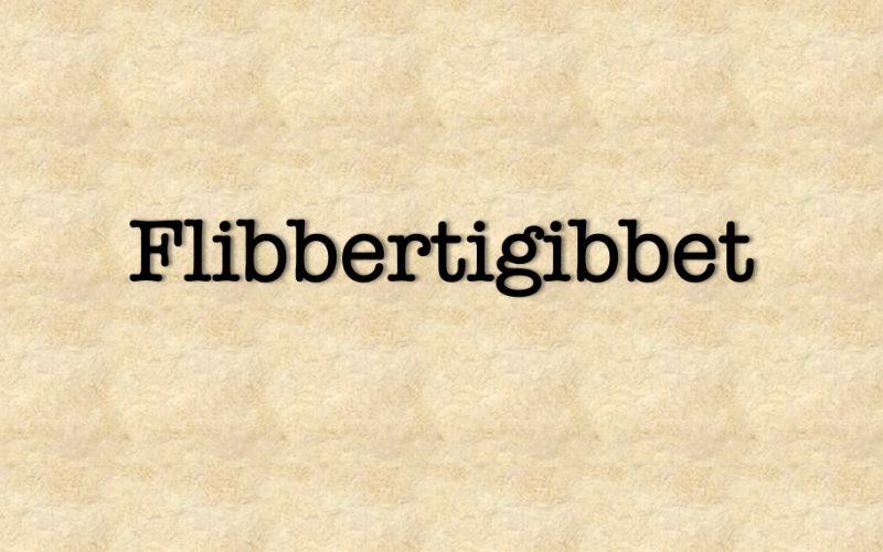 flibbertigibbet, notebook, typewriter font, words to bring back, words