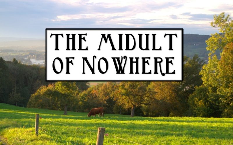 midult of nowhere, countryside, relocation, moving to the country