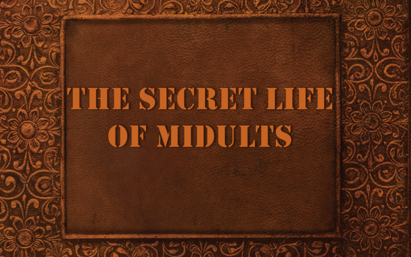 secret life of midults, book cover, do in secret, embarrassing