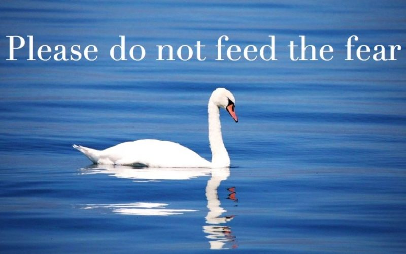 please do not feed the fear, midult, mantras, affirmations