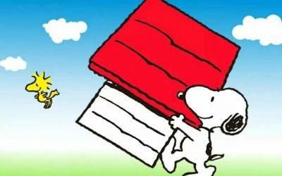 snoopy, moving house, removal men, directory, relocation, man with a van