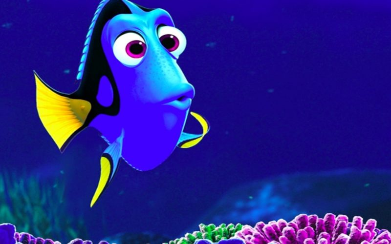 finding dory, dory, fish, forgetful, always forgetting, bad memory