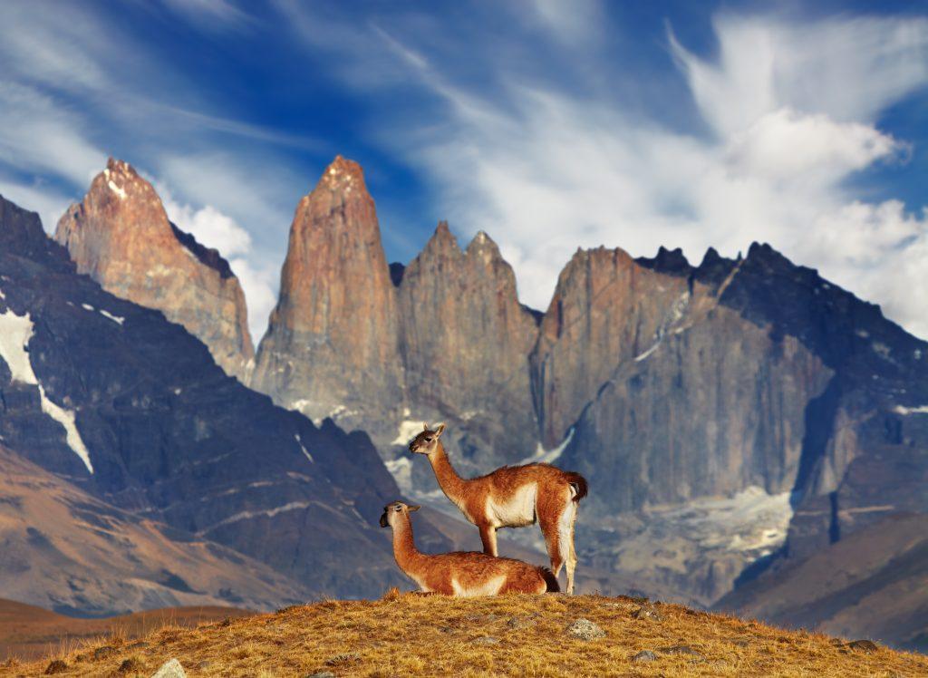 wexas travel, patagonia, carretera austral, santiago, holiday, vacation, travel, winter sun