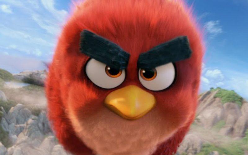 angry bird, rage, anger, angry, fury
