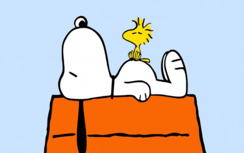 snoopy, woodstock, crippled, small things, tiny things, emotional, sad