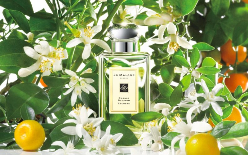 jo malone london, orange blossom, cologne, perfume, scent, beauty, midult beauty, beauty school dropout