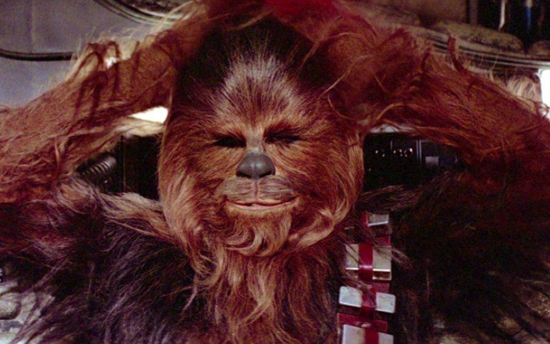 chewbacca, star wars, hairy, hibernate, hair, less ready for summer, less ready