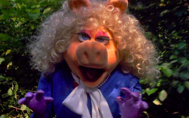 miss piggy, angry, snarling, tiny annoying things, annoying, infuriating