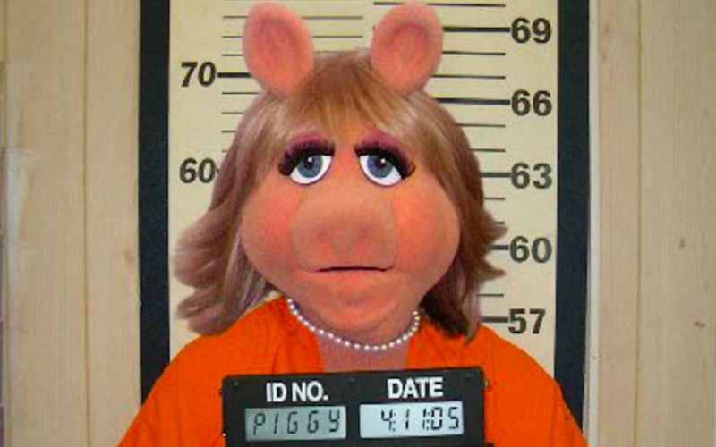 miss piggy, mug shot, arsehole, annoying, infuriating