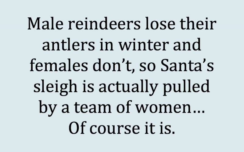 female reindeer, meme, antlers, winter, santa, sleigh, female power, secret female power