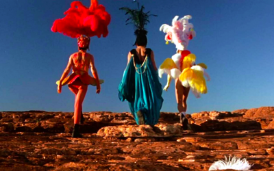 priscilla, queen of the desert, mistaken identity, trapped in the body of