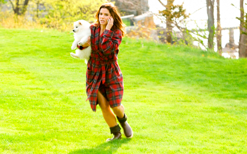 sandra bullock, the proposal, busy, running, multitasking, dog
