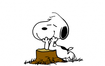 snoopy, daydreaming, fizz of possibility, hope, opportunity