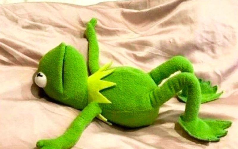 kermit the frog, muppets, exhausted, tired