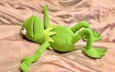 kermit the frog, muppets, exhausted, can't be arsed, ground to halt